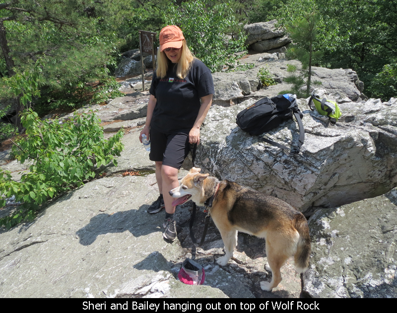 Sheri and Bailey hanging out on top of Wolf Rock