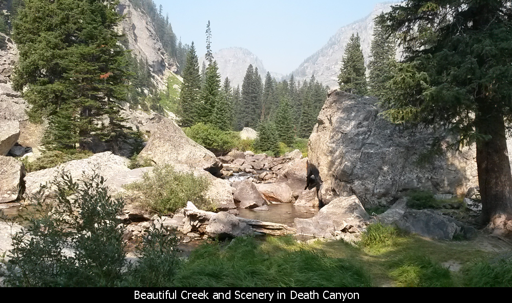 Beautiful Creek and Scenery in Death Canyon